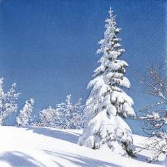 611316-White Winter Tree 넵킨페이퍼(20매)