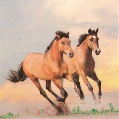 211511-Wild Horses 넵킨페이퍼(20매)