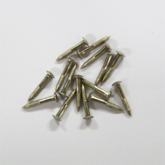 민자나사못 4*13*2mm (약20개) -백동